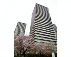 ザ・リバープレイスサウスタワー